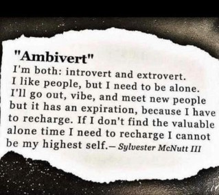 ambivert-im-both-introvert-and-extrovert-i-like-people-but-21115524 (2)