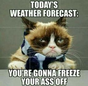 0414b286c919655cee7c92a4d84cc73a--cold-weather-funny-weather-memes