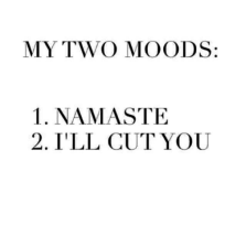 my-two-moods-1-namaste-2-ill-cut-you-12246470