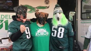 Eagles-Dogs.4-640x360