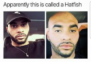 hat fish