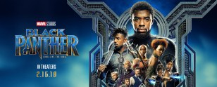 r_blackpanther_hero_09b05dc9