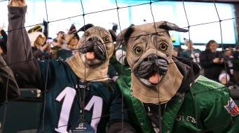 Jan 21, 2018; Philadelphia, PA, USA; Philadelphia Eagles fans cheer from the stands prior to the NFC Championship game against the Minnesota Vikings at Lincoln Financial Field. Mandatory Credit: Bill Streicher-USA TODAY Sports
