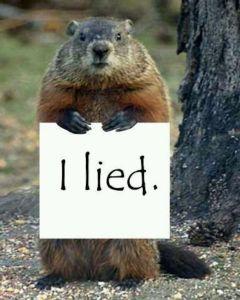 235796-Groundhog-Phil-Lied