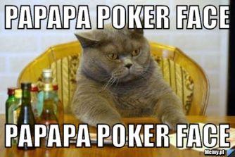 fat cat doublefml
