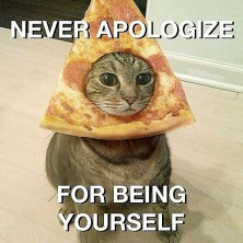 e0de0d89120069175ea835583692602a--pizza-hat-cat-pizza