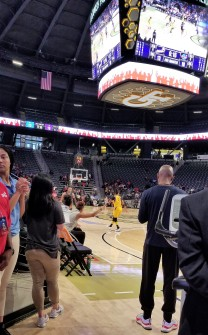 Fat Darrell WNBA
